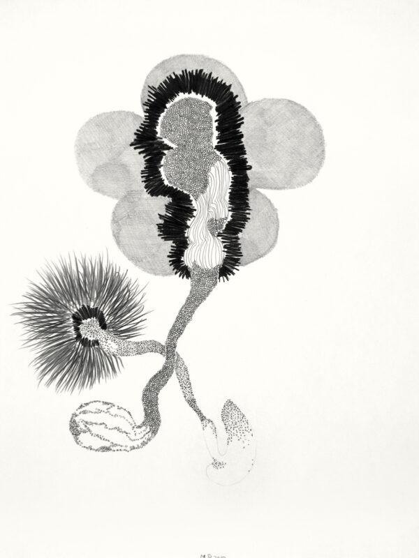 tekeningen-zwart-wit